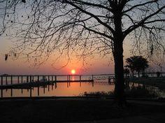 Sunset on Lake Dora, Mount Dora, FL