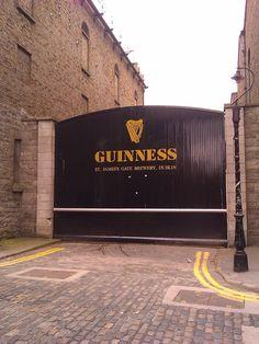 Streamzoo photo - Guinness