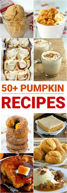 If you love all things pumpkin and pumpkin spice take note of these amazing recipes to try this fall! Now, I'll admit that pumpkin pie isn't always my favorite thing, even though we have it every Thanksgiving. But these amazing recipes are so much more and I can't wait to make my way through the list. 50+ Pumpkin Recipes To Make This Fall Pumpkin Chocolate Chip Cookies Pumpkin Spice Caramel Wontons via The Nerd's Wife Pumpkin Alfredo via Yellow Bliss Road Pumpkin Cookies via D...