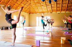 yoga at Todos www.viayoga.com