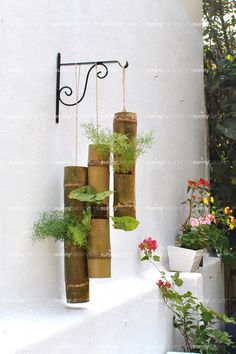 Bamboo Planters – The mysunnybalcony e-store
