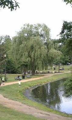 1000 Images About Worcester Ma On Pinterest Worcester