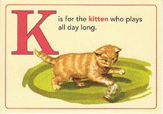 K is for the kitten who plays all day long.