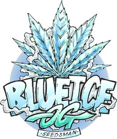 Blue Ice OG was created by crossing an elite clone of the famous and in-demand OG Kush strain along with a Blueberry Ice. It is a strong and robust plant w Cannabis Seeds Online, Cannabis Seeds For Sale, Marijuana Art, Marijuana Plants, Ganja, Weed Stickers, Seed Shop, Weed Strains, Buy Seeds