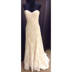 Strapless Lace Fit & Flare Wedding Dress• Ava's Bridal Couture Fit And Flare Wedding Dress, Wedding Dress Sizes, Wedding Dresses, Formal Dresses For Weddings, Formal Wedding, Affordable Bridal, Recycled Bride, Bridal Salon, Gold Lace
