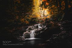 Lights of the Fall by MatthaeusKalinowski. Please Like http://fb.me/go4photos and Follow @go4fotos Thank You. :-)