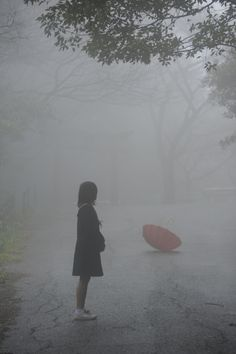 Rain........THE WIND BLEW MY UMBRELLA OUT OF MY HAND........DILEMMA---DO I GO AFTER IT OR NOT??????????..............ccp