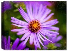 Lavender Wild Flower- Ink on Fine Art Canvas