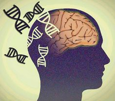 Researchers identify a previously unknown neurogenetic recessive disease.