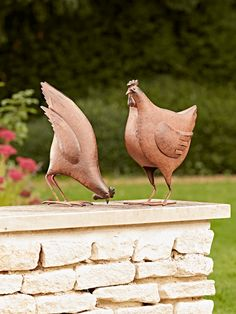 Rusty Hens