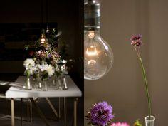 flower salon at droog, amsterdam…