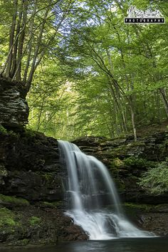 Lewis Falls, State Game Lands 13, Sullivan County, PA. June 2016.