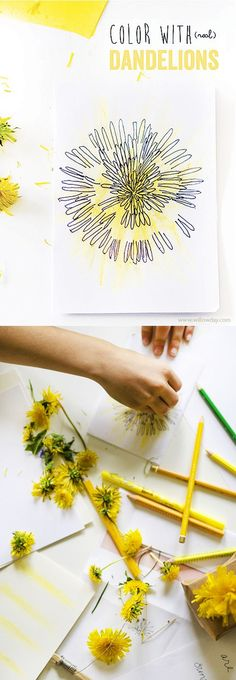 Nature Craft: Paint naturally with dandelions as brushes | willowday