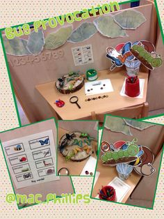 Bug investigation area (complete with ladybirds and bees inspired by Rache! Nursery Activities, Preschool Activities, Investigation Area, Investigations, Minibeasts Eyfs, Early Years Science, Kindergarten Colors, Emergent Curriculum, Reception Class