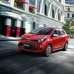 Toyota 4, Toyota Hilux, Kia Picanto, Kia Motors, Mazda 2, Kia Sportage, Peugeot, Fiat 1, Volkswagen Gol