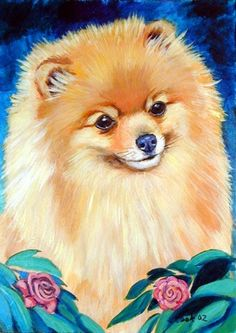 Pomeranian Dog Giclee Fine Art Print size 8x10 on by DogArtByLyn, $19.94