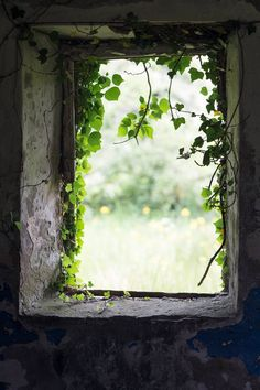 Irish Window Photography - Abandoned Cottage Fine Art Photograph - County Fermanagh - Northern Ireland - Real Time - Diet, Exercise, Fitness, Finance You for Healthy articles ideas Dslr Background Images, Photo Background Images, Picsart Background, Blurred Background, Photo Backgrounds, Digital Backgrounds, Window Photography, Fine Art Photography, Nature Photography