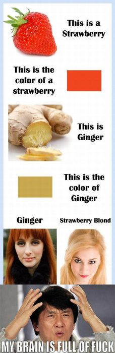 Mind boggling = Strawberry vs. Ginger. This is a strawberry. This is the colour of a strawberry. This is Ginger. This is the colour of Ginger. Ginger (hair), Strawberry Blond. My mind is full of fuck. Jackie Chan
