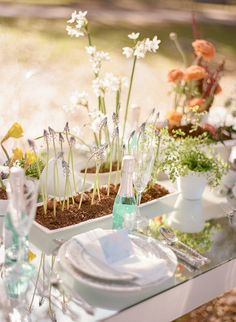 Spring flowers centerpiece... Love the boxes with the rich color from the dirt. So fresh!