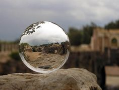 Photographer :  Arkady Golod    Tags: Arkady Golod, convex, mirror ball, photo, photography, sphere