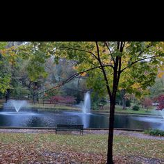 Ashland KY-City Park love this shot