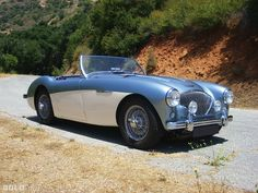 1956 Austin-Healey 100M Le Mans Roadster Images | Pictures and Videos
