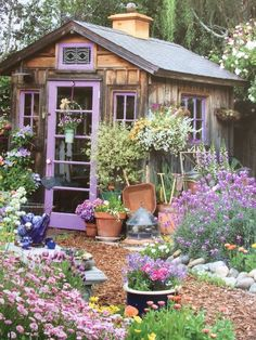 Love the shabby chic shed decorating garden, shed design, purple garden.