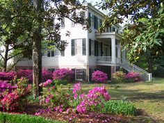 Spend a morning or afternoon exploring one of the oldest surviving peanut plantations in North Carolina. The plantation is home to fun events including a farmers market, cooking classes, field trips, plant sales, tours, an animal farm and so much more. Learn about the history of Poplar Grove and enjoy all kinds of family fun!