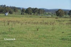 Finding acreage or farms for sale in ABERFOYLE, NSW has never been easier