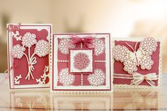 The great Tattered Lace Essential Shape Collection. For more information visit www.tatteredlace.co.uk