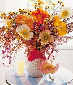 kuhles stiefmutterchen pflegetipps und nutzliche infos stockfotos pic der abeaeebdec flower decoration via