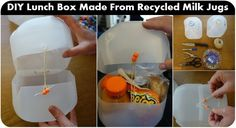 DIYLunch Box Made From Recycled Milk Jugs | HGTV Decor