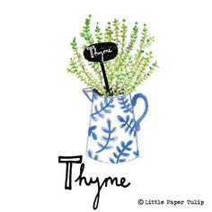 #thyme  #herb #chalklettering #chalkpaint #chalklabel #herbs #garden #grow #type #typography #lettering #handrenderedtype #font #jug #rustic #paint #watercolor #watercolour #blueandwhite #blueandwhiteporcelain #illustration #illustrator #winsorandnewton #winsornewton #art #print #foodillustration #recycle #recycling #recycled