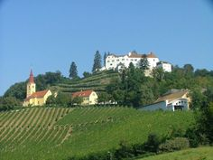 Located in southern Styria's wine country this Austrian castle hotel offers 15 stylishly appointed guest rooms, hearty traditional dishes and wines from the family winery Winkler-Hermaden Hotels, Restaurant, Wine Country, Hotel Offers, Austria, Countryside, Places To Go, Europe, Mansions