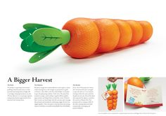 Mandarin oranges were bagged to look like carrots for this direct mail campaign