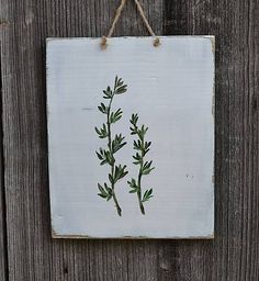 Drevené obrázky-sada s rastlinami