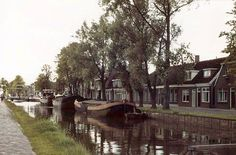 Het haagje. Holland, Places, 1975, The Nederlands, The Netherlands, Lugares
