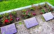 Tombes des victimes
