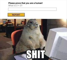 prove you are a human