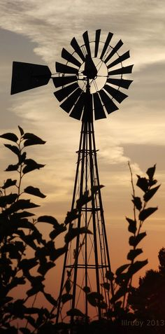 When I was a kid, I played in the huge cast iron kettle my Grandpa used to water his cows. If the wind wasn& blowing one of us kids would go up and spin the blades.