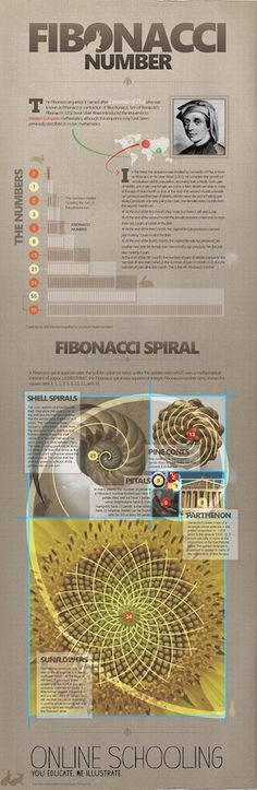 [A3N] : Fibonacci Number  -  Project M's dual nautili (2 Nautilus) infinity complex ---  - Adrian Mendoza - author of The Kaleidoscope : The Gift of Madness