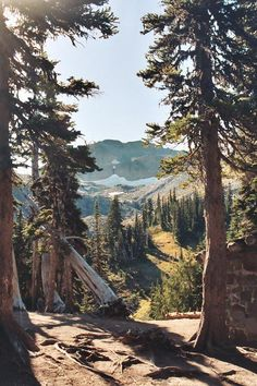 Scenery and Nature Image Nature, Adventure Is Out There, Oh The Places You'll Go, Belle Photo, Beautiful Landscapes, The Great Outdoors, Wonders Of The World, Wilderness, Nature Photography