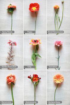 Wedding Flower Recipe Guide on Pinterest | DIY, White Wedding ...