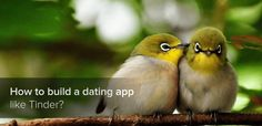 How to Build Dating App like Tinder  http://erminesoft.com/how-to-build-dating-app-like-tinder/