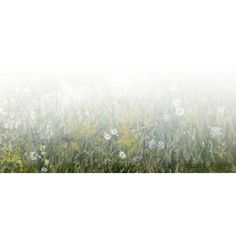 Bez naslova ❤ liked on Polyvore featuring backgrounds, tubes, effects, nature, grass i scenery