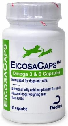 3 Pack Dechra EicosaCaps Omega 3 6 Fish Oil Nutritional Supplements for Dogs and Cats Up to 60 Capsules Each X 3 Bottles -- Check out the image by visiting the link. (This is an affiliate link) Pet Supplements, Nutritional Supplements, Omega 3, Dog Food Online, Nursing Supplies, Cat Supplies, Large Dog Crate, Wireless Dog Fence, Dog Nutrition