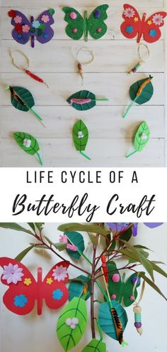 Lifecycle of a Butterfly Craft. How to make four different decorations to create your own lifecycle of a butterfly tree. A great #educational #craft for #kids #butterfly #kidscraft #education #craftsforkids #learning