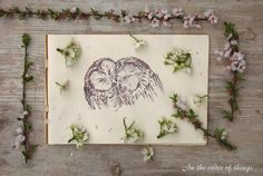 Lovely owl illustration by AliceKiss  Pinned by www.myowlbarn.com