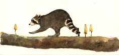 "Funny raccoon walking mushroom branch tree mountain cute grass forest animal 8x4"" 21x9.5 cm art original Watercolor painting by Juan bosco"