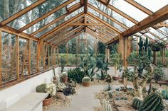 Could you imagine having this greenhouse full of succulents in your backyard? 📸cultivo_cactos_suculentas 🎁 Shop Now for Succulent Special Deals ➡️. Greenhouse Growing, Greenhouse Plans, Winter Greenhouse, Greenhouse Film, Greenhouse Gases, Plant Watering System, Magic Places, Glass House, Glass Cabin
